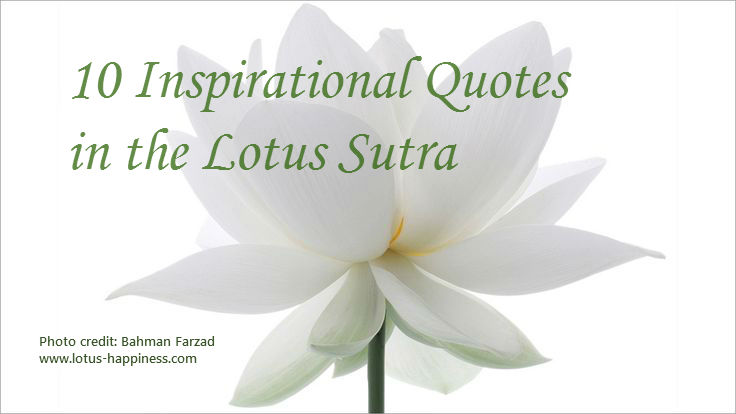 10 inspirational quotes in the lotus sutra part 1 lotus happiness mightylinksfo Choice Image